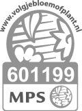 Vignet MPS-SQ NL-601199