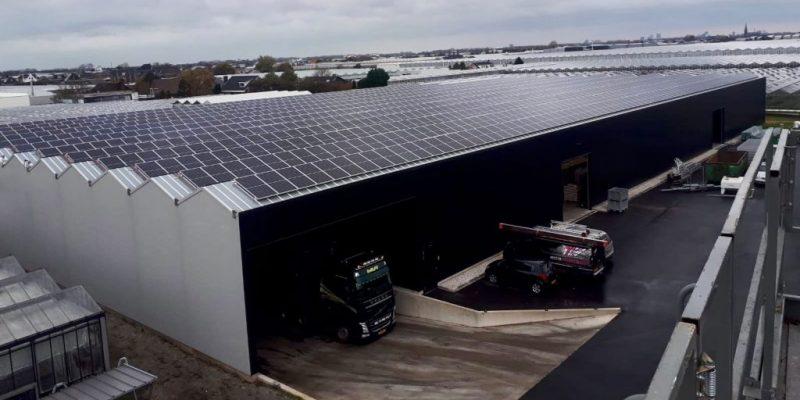 zonnepanelen-okplant-duurzaamheid