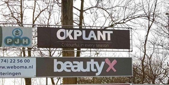 Website_OKPlant_blogberichten_Westlandia