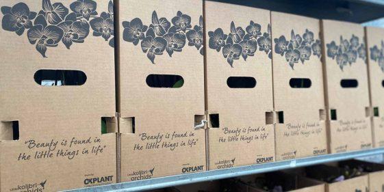 Website_OKPlant_blogberichten_duurzame_verpakking_less_plastic