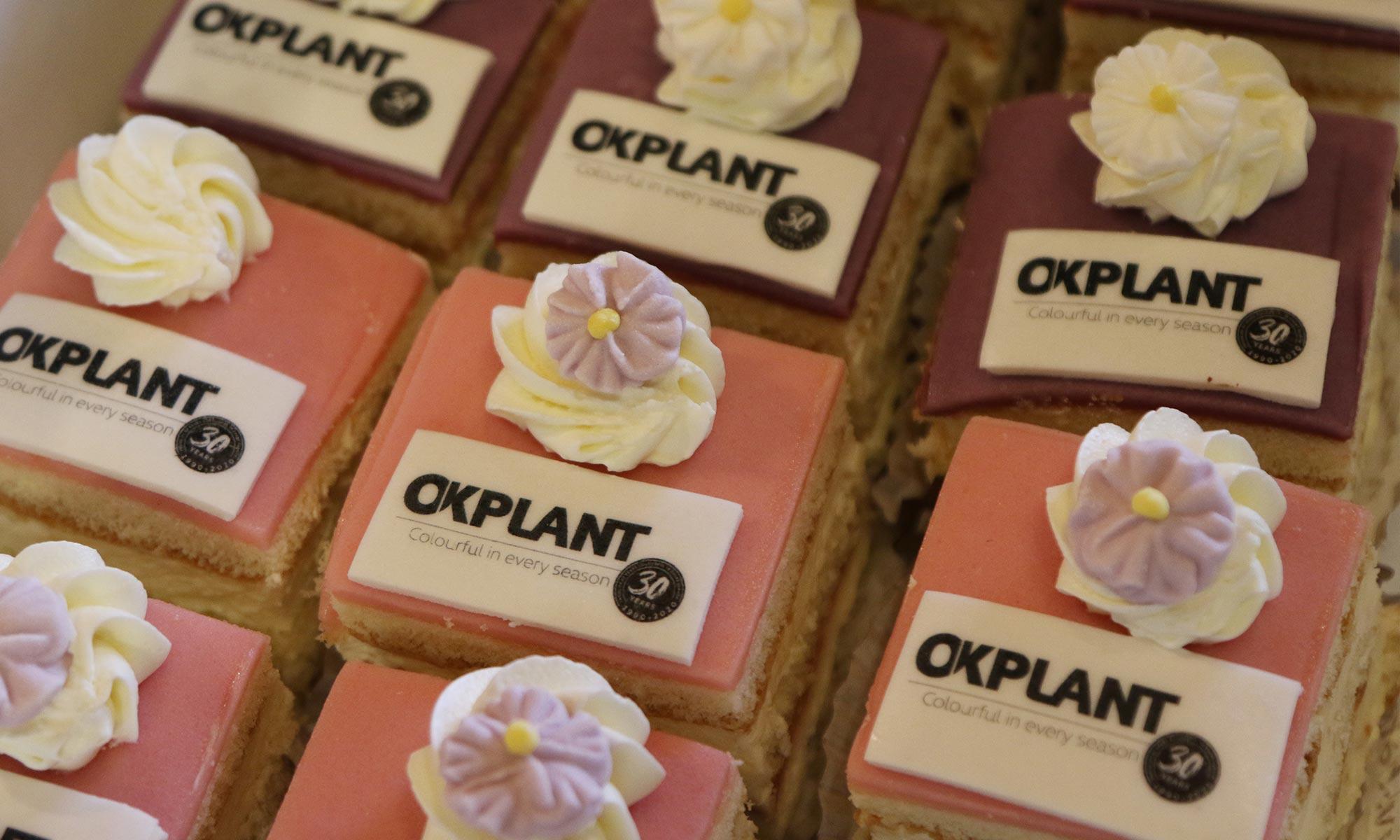 Blog bericht OK Plant 30 jaar 2