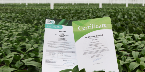 OK Plant behaald MPS certificaten